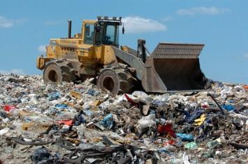 bird problem landfill